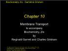 Bài giảng Biochemistry 2/e - Chapter 10: Membrane Transport