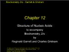 Bài giảng Biochemistry 2/e - Chapter 12: Structure of Nucleic Acids