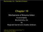 Bài giảng Biochemistry 2/e - Chapter 16: Mechanisms of Enzyme Action