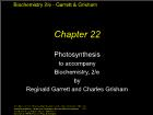 Bài giảng Biochemistry 2/e - Chapter 22: Photosynthesis