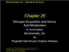 Bài giảng Biochemistry 2/e - Chapter 26: Nitrogen Acquisition and Amino Acid Metabolism