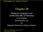 Bài giảng Biochemistry 2/e - Chapter 28: Metabolic Integration and Unidirectionality of Pathways