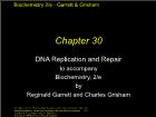 Bài giảng Biochemistry 2/e - Chapter 30: DNA Replication and Repair