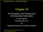 Bài giảng Biochemistry 2/e - Chapter 34: The Reception and Transmission of Extracellular Information