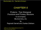 Bài giảng Biochemistry 2/e - Chapter 5: Proteins: Their Biological Functions and Primary Structure