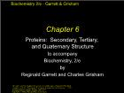 Bài giảng Biochemistry 2/e - Chapter 6: Proteins: Secondary, Tertiary, and Quaternary Structure