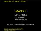 Bài giảng Biochemistry 2/e - Chapter 7: Carbohydrates