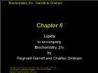 Bài giảng Biochemistry 2/e - Chapter 8: Lipids