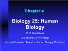 Bài giảng Biology 25: Human Biology - Chapter 4