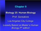 Bài giảng Biology 25: Human Biology - Chapter 9: Human Respiratory System