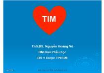 Bài giảng Giải phẫu học - Tim