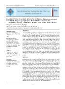 Đánh giá năng suất vật rụng cây đước đôi (rhizophora apiculata), vẹt tách (bruguirea parviflora) và mắm trắng (avicennia alba) tại cồn Ông Trang, xã Viên An, huyện Ngọc Hiển, tỉnh Cà Mau