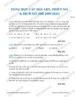 Tổng hợp câu hỏi ARN, phiên mã & dịch mã