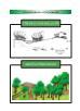 Hướng dẫn khai thác gỗ tác động thấp
